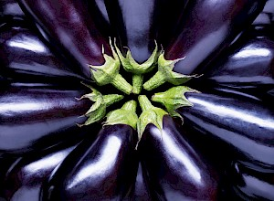 Photograph of whole aubergines photographed for Marks and Spencer's Bag for life